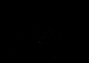 MaPetiteGraine-nouvelle-version3